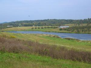 C&M farm.pond.2