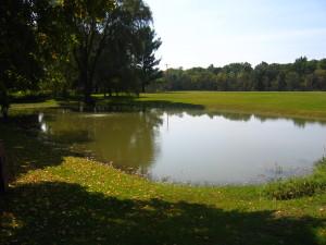 Kelly.Pond.6